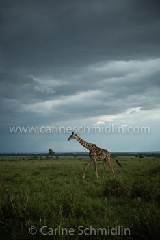 KENYA-1997